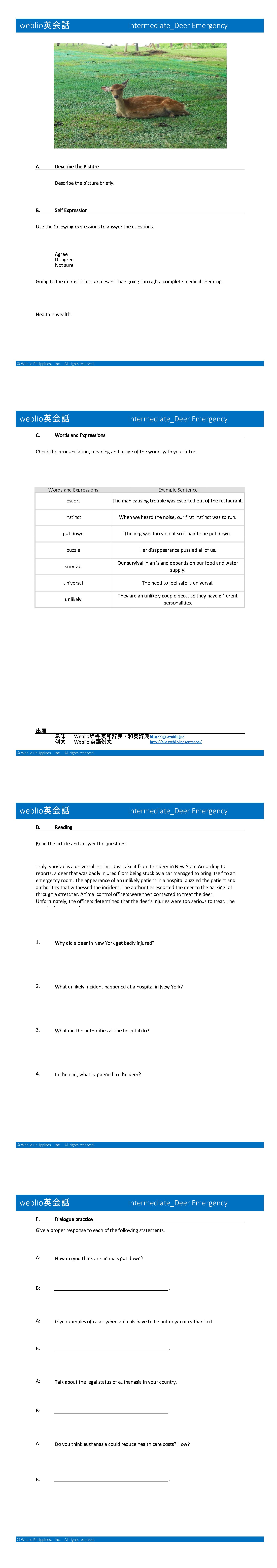 per-level-intermediate-deer-emergency-en